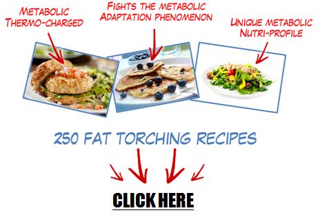 metabolic cooking 11